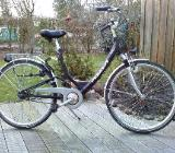 Pegasus Fahrräder - Bremen