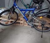 Mountainbike - Wilhelmshaven