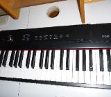 Keyboards - Bremen
