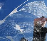 Biete Fensterreinigung an - Oldenburg (Oldenburg)
