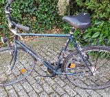 Herrenrad und Damenrad Pegasus - Achim