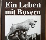 Ein Leben mit Boxern - Bremen Östliche Vorstadt
