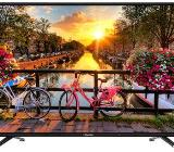 Hisense 55 Zoll LCD Smart TV - Oldenburg (Oldenburg)