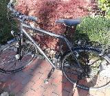 Herren-Trekkingrad - Bremen