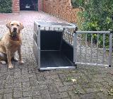 Transportbox für Hunde - Oyten