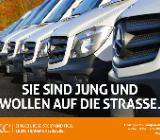 Mercedes-Benz Sprinter 319 CDI/43 Maxi KLIMA 7G-Tronic #79T295 - Hude (Oldenburg)