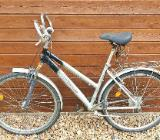 Alu 28 Zoll Damen Fahrrad der Marke Fischer - Verden (Aller)