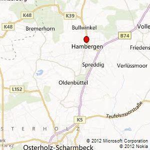 Holzpellets , Antistaub-Pellets - Hambergen