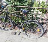 Fahrrad 15€ - Bremen