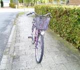 26er Frauenrad, 3 - Gang - Nabenschaltung, Griffschaltung - Delmenhorst