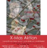 Happy X-Mas-Aktion 4x Unterricht Gitarre Ukulele Bass