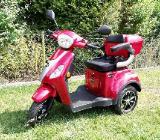 Elektroroller E-Trike Rolektro - Lilienthal