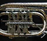 Haagston / Brassego Profi Konzert - Trompete Wien kompakt mit Singing-Bell Patenthämmerung - Bremen Mitte