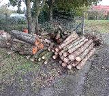 Brennholz - Schwanewede