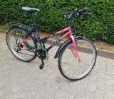 MTB Fahrrad Damen Giant Classic - Weyhe