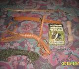 Alles für die (Jagd-) Hundeausbildung - Syke