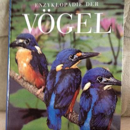 Enzyklopädie der Vögel