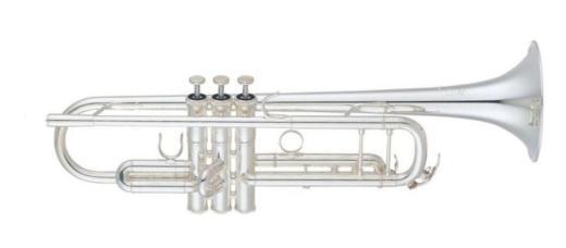 Yamaha Xeno Profiklasse Trompete YTR 8335 GS - Bremen Mitte