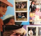 Jubiläumskollektion zum 50. Geburtstag von Lady Diana im Album, neu und unbenutzt! - Osterholz-Scharmbeck