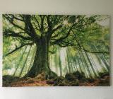 Wald und Baum Leinwand auf Holzgestell - Hagen im Bremischen
