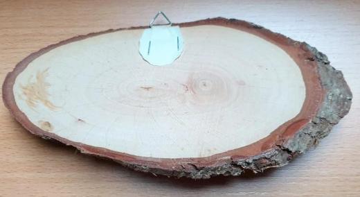 Igel mit Fliegenpilz Bild aus Holz mit Baumrinde - Verden (Aller)