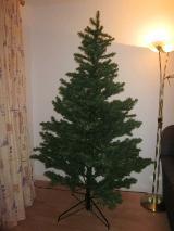 Weihnachtsbaum/ Tannenbaum