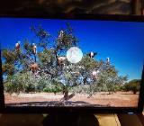 LG Flatron W2242T 56 cm (22 Zoll) LCD Monitor - Schwarz VGA&DVI - Oldenburg (Oldenburg)