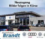 Volkswagen Touran 1.6 TDI Cup NAVI*PDC*SITZH.*GRA - Bremen