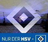 ***HSV Dauerkarte(n) GESUCHT!*** - Holdorf