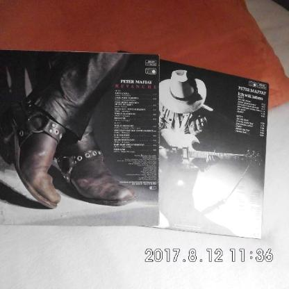 2 Langspielplatten von Peter Maffay - Bremen
