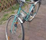 26 er Rad - Bremen