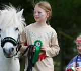 Ponyaktion für Kinder - Borstel