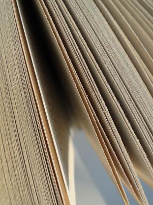 Prof. Übersetzungen/Transkription Niederländisch, Englisch, Deutsch - Bremen