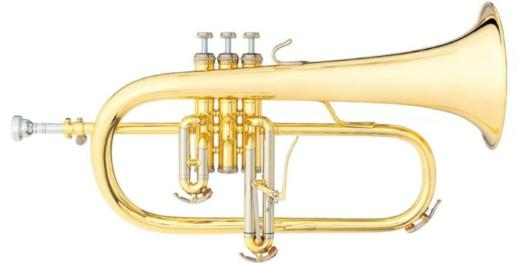 B & S 3145 L Flügelhorn - Made in Germany - Neuware inkl. Koffer