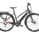 "Pegasus Tecaro Evo 10 Damen E-Bike 28"" 50cm schwarz rose 2018 - Friesoythe"