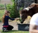Neues Selbstbewusstsein durch Tiere - Ponyhof Borstel - Borstel