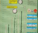 40 Horizont Zaunpfähle aus Kunststoff - Weyhe