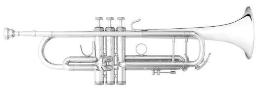 B&S Challenger Profiklasse - Trompete 3137 G - S, Sonderanfertigung, Neuware - Bremen Mitte