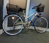 "Pegasus Fahrrad 28"" - Dinklage"