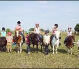 Reitunterricht - Ponyreiten für Kinder - Borstel