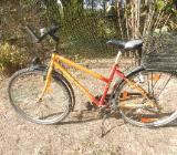 Gebrauchte Fahrräder 24 und 26 - Wagenfeld