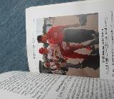 Ralf Schumacher - Bremen