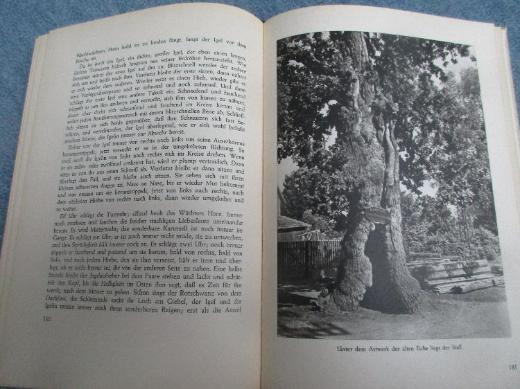Im Wald und auf der Heide - Bremen