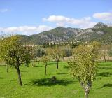 Rad und Finca auf Mallorca - Dötlingen