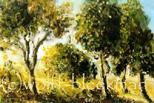 Birken im Sommer - Öl auf Leinwand 40 x 30 cm Original Ingrid Wolff-Bleekmann
