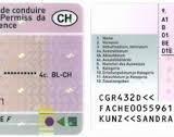 Führerschein und Fahrkurs - Münster