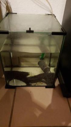 Nano Becken Aquarium