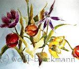 Tulpen, kurz vor dem Verblühen - Aquarell 60 x 50 cm Original Ingrid Wolff-Bleekmann - Münster