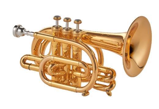 Kühnl & Hoyer Universal Prof. Malte Burba Goldmessing Pocket Trompete, Neuware