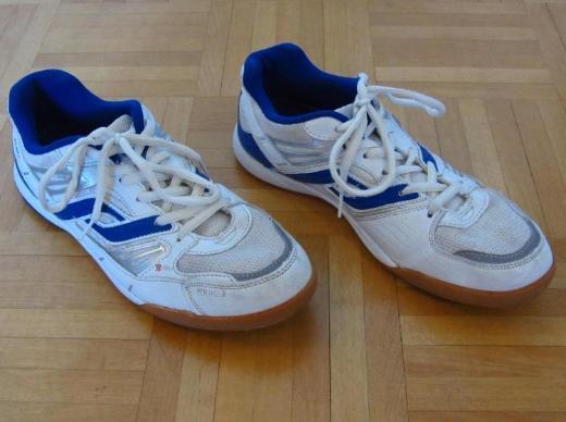 Pro Touch Sportschuhe Indoor, Gr. 39, Modell Rebel Jr., weiß-blau